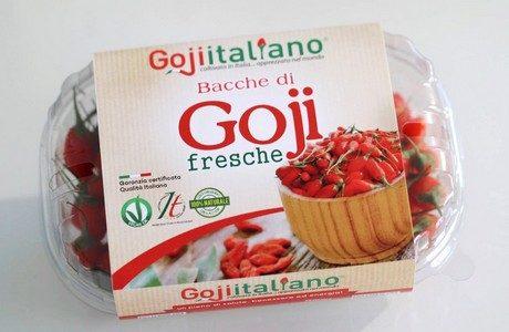 GOJI ITALIANO! FRESCO!!