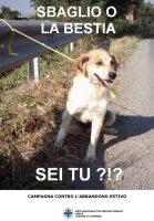 Sky Uno Loves Animals, contro  l'abbandono  degli  animali