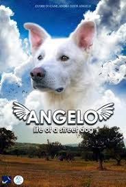 ANGELO – LIFE OF A STREET DOG: PRESENTAZIONE UFFICIALE DEL CORTOMETRAGGIO AL MONDADORI MEGASTORE DI MILANO