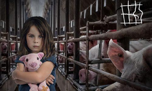 NO  AGLI ANIMALI  IN  GABBIA