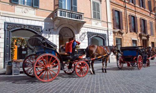 BOTTICELLE: IN ARRIVO ONDATE DI CALORE LIVELLO 3. CAVALLI NON TUTELATI, RISCHIANO LA VITA